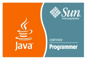 Alessandro Ceseno - Sun Certified Programmer for the Java 2 Platform, Standard Edition 6.0